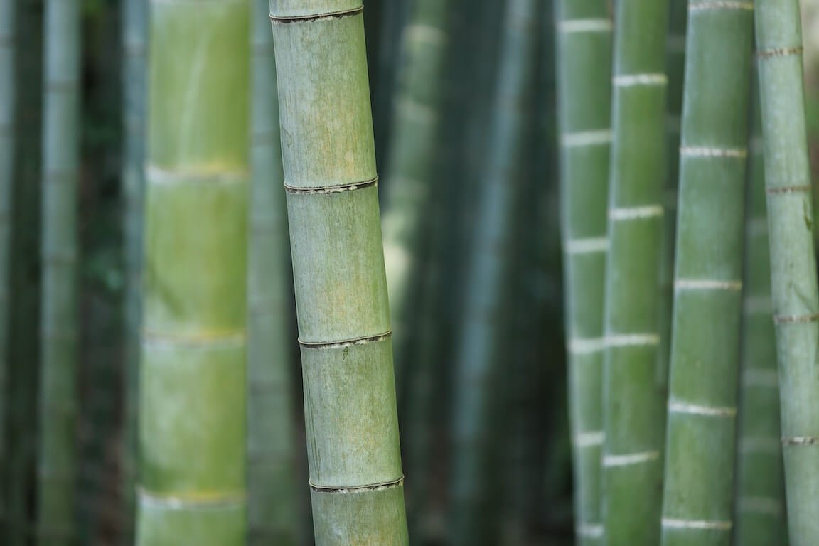 How To Clean Bamboo Floors Best Bamboo Floor Cleaner Reviews
