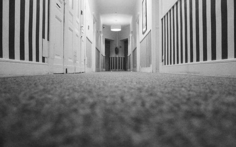 carpet cleaning vinegar