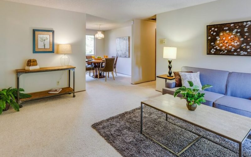 living room for hepa filter vacuums featured