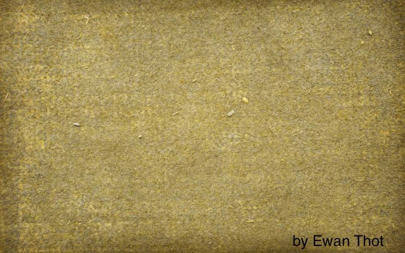 dirty carpet featured